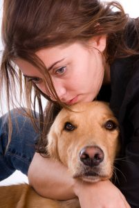 Sometimes divorce can can also cause the loss of a pet. Please also review our Pet Loss Grief Counseling program